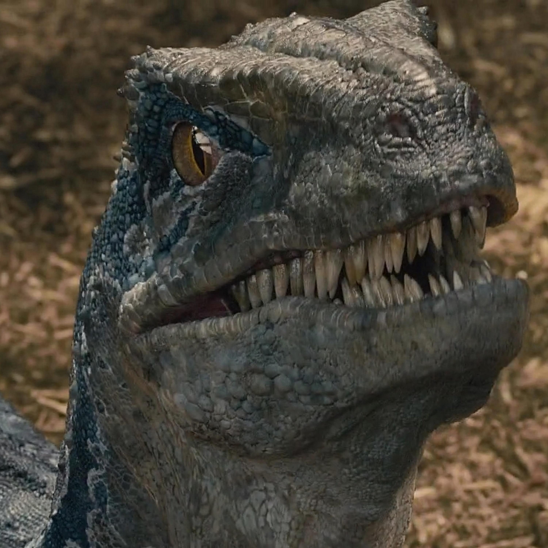 Jurassic World 3 | #35