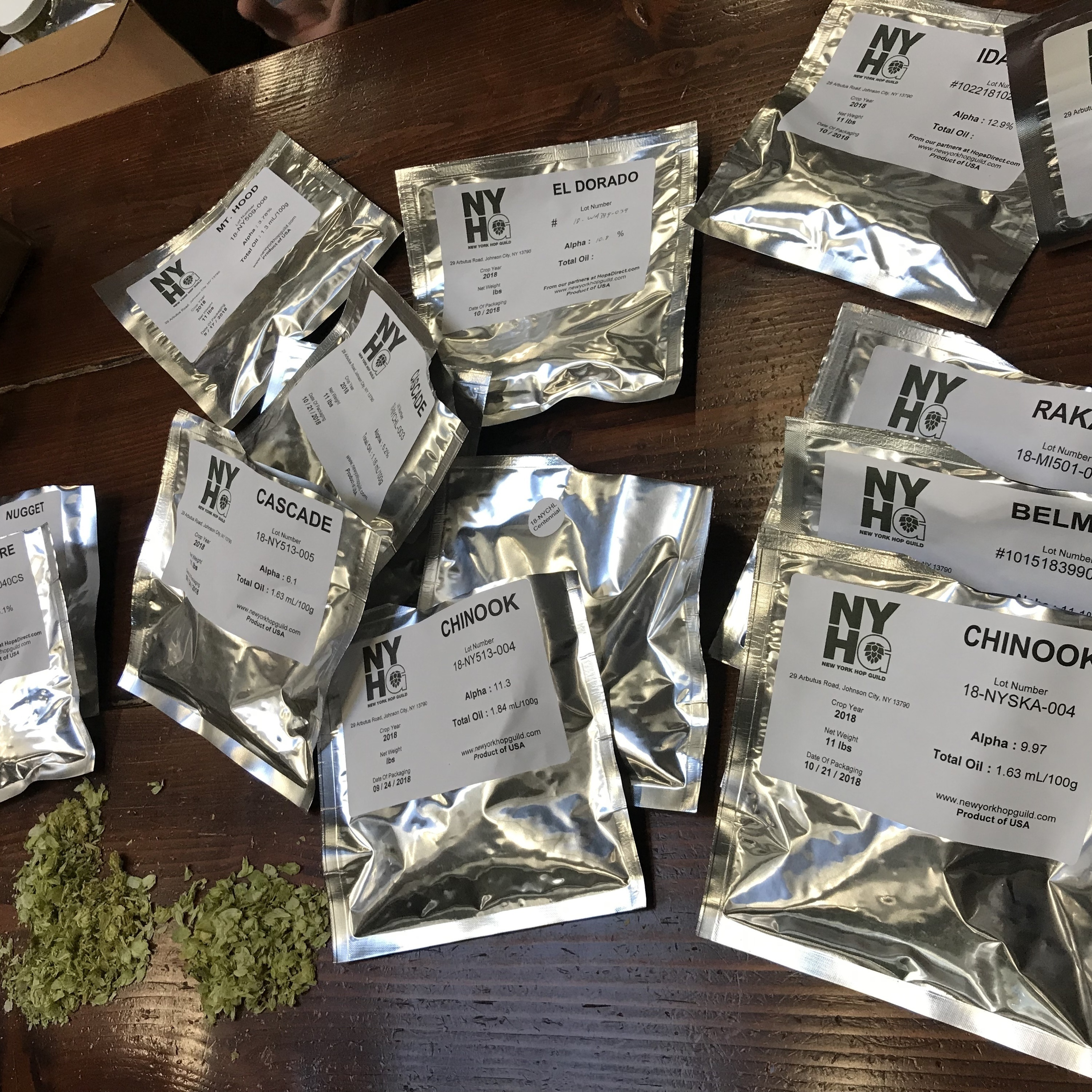 Episode 241: Hops in NY State and brewing in India!