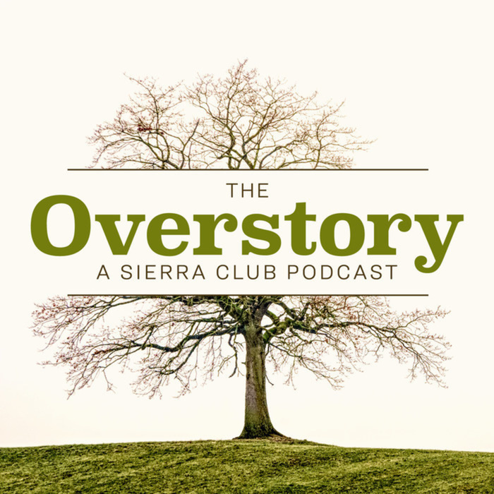 The Overstory | Ep. 8: Rewilding Patagonia | Episode 8
