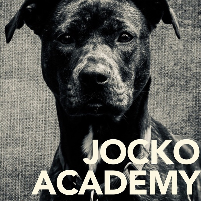 Jocko Academy