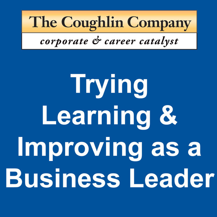 Trying, Learning, & Improving as a Business Leader