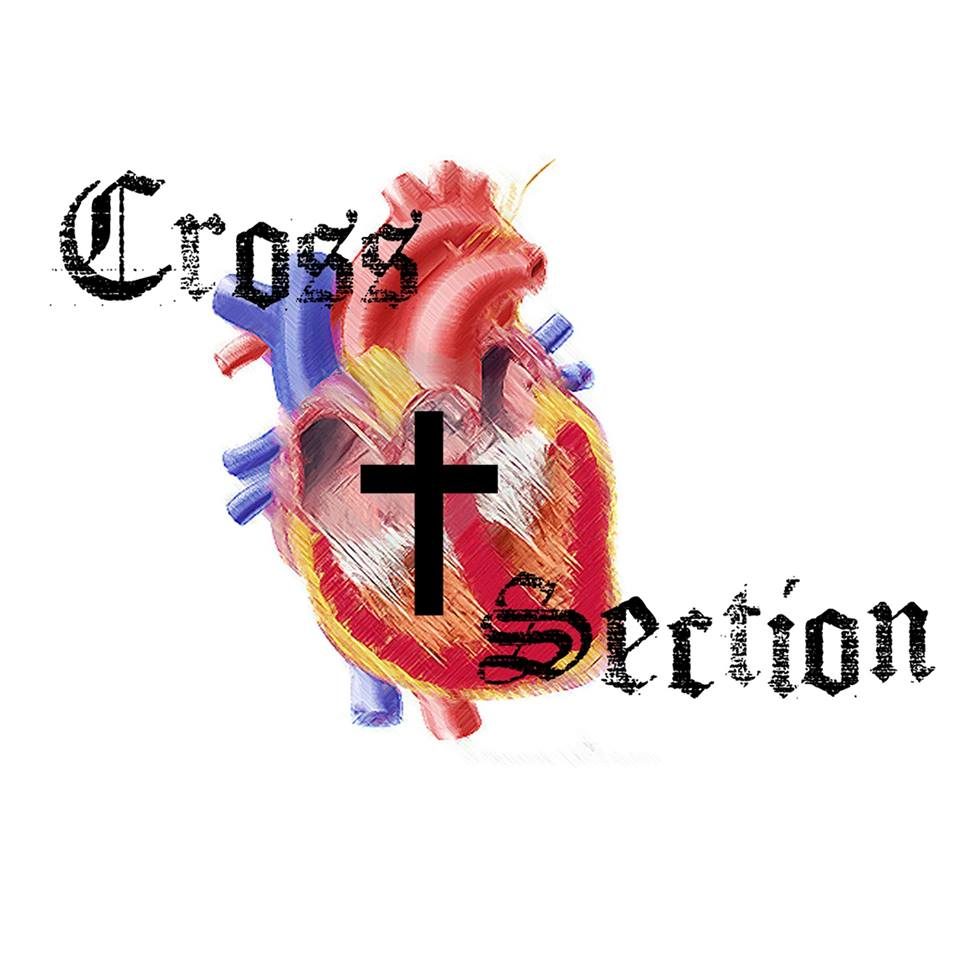 Cross 20section